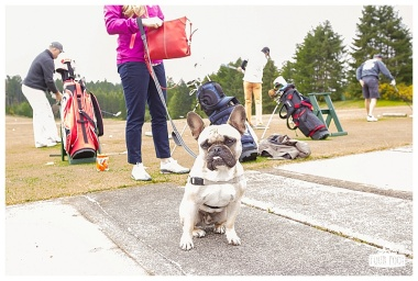 Fore the Animals 2015-8337