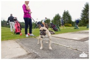 Fore the Animals 2015-8338