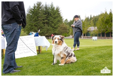 Fore the Animals 2015-8355