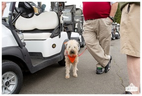 Fore the Animals 2015-8360