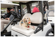 Fore the Animals 2015-8385
