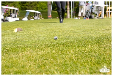 Fore the Animals 2015-8428