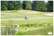 Fore the Animals 2015-8528