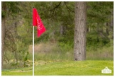 Fore the Animals 2015-8552