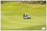Fore the Animals 2015-8554