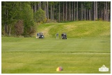 Fore the Animals 2015-8567