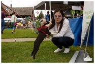 PetsWalk 2015-0793