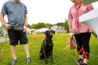 Wagfest 2016-0809